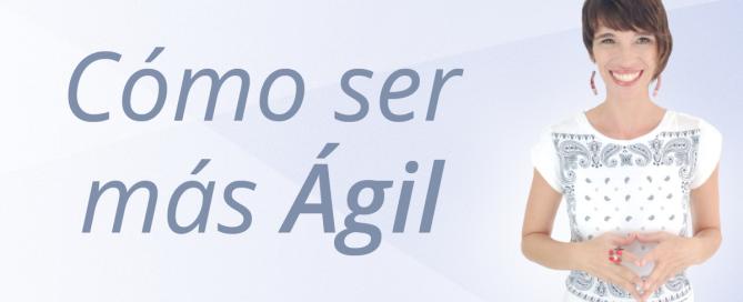 agil-SM